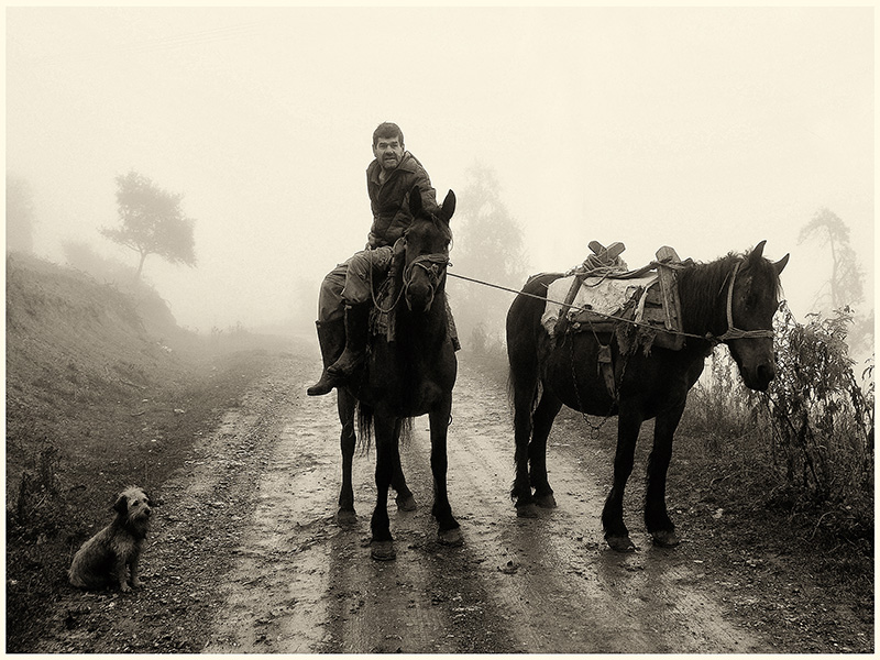 © Nenad Nikolić, The Horseman