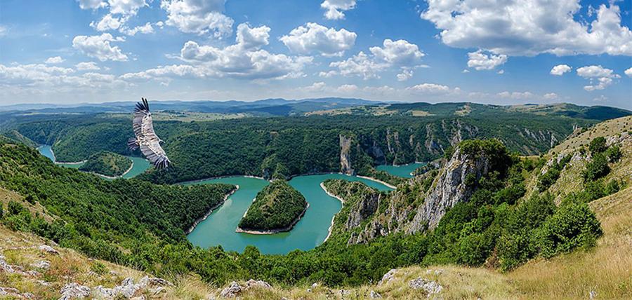 © Sasa Pokimica, Uvac River and Eagle